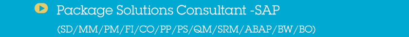 Package Solutions Consultant -SAP