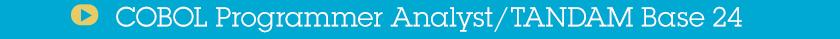 COBOL Programmer Analyst/TANDAM Base 24
