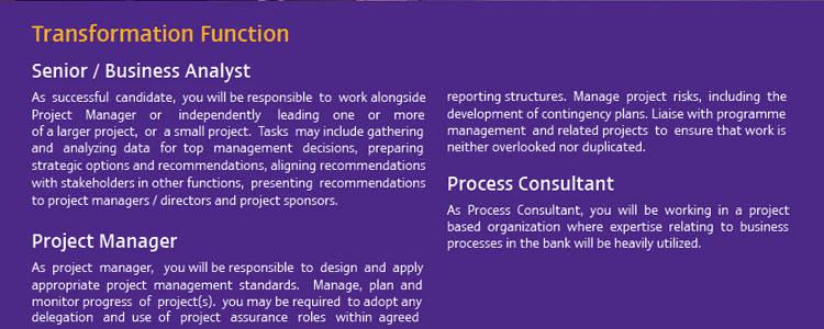 SCB Senior Business Analyst jobs